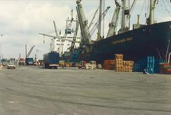 Overslag van goederen in de Bijleveldhaven.