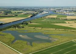 Natuurgebied bij de Zeedijk te Westdorpe.