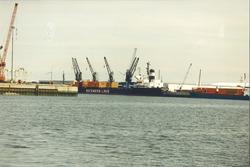 Zeeschepen in de Bijleveldhaven.