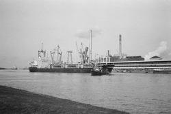 Zeeschip en sleepboot aan de kade van de Nederlandse Stikstof...