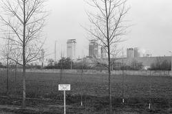 Nederlandse Stikstof Maatschappij (NSM) gezien vanaf de Kruisweg in de...