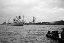 Het lossen van een zeeschip met drijvende kranen aan de terminal van...