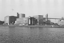 Bedrijf Suiker Unie te Sas van Gent.