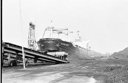 Lossen van het zeeschip Navios Miner met drijvende kranen aan de...