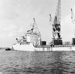Zeeschip aan de kade van de Zevenaarhaven, maart 1978.