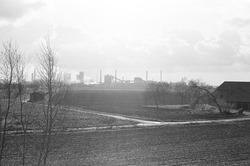 Koegorspolder. Op de achtergrond de Nederlandse Stikstof Maatschappij...