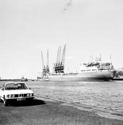 Zeeschip aan de kade in de Zevenaarhaven.