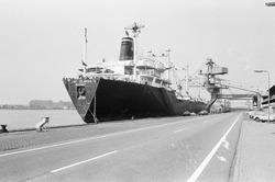 Zeeschip aan de kade van de Nederlandse Stikstof Maatschappij (NSM) te...