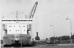 Het lossen van hout uit een zeeschip aan de kade van de Zevenaarhaven.