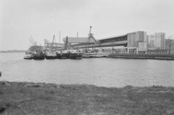 Binnenvaartschepen aan de kade bij de Nederlandse Stikstof...
