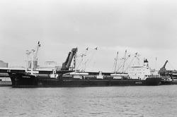 Zeeschip aan de kade bij de Nederlandse Stikstof Maatschappij (NSM)