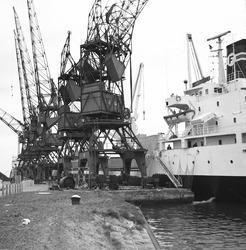 Zeeschip en verrijdbare kranen in de Zevenaarhaven.