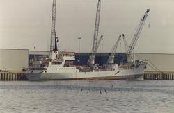 Reefer schip in de Bijleveldhaven. Foto gemaakt ten behoeve van het...