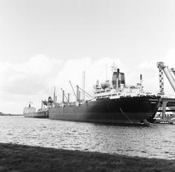 Zeeschepen aan de kade van de Nederlandse Stikstof Maatschappij (NSM)...