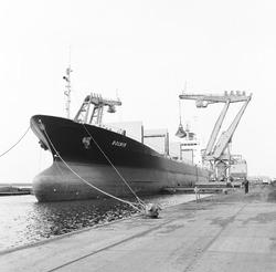 Overslag met drijvende kranen uit het zeeschip Rolnik in de...