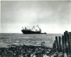Boord boord overslag vanuit een zeeschip in de Put van Terneuzen.