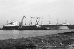 Lossen van een zeeschip met drijvende kranen door Ovet in de...