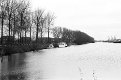 Zijkanaal B ter hoogte van Sluiskil.