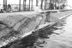 Het vernieuwen van een damwand aan de westzijde van Zijkanaal B te...