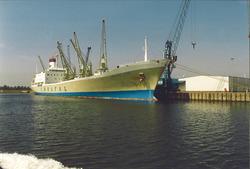 Zeeschip in de Bijleveldhaven.