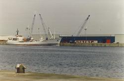 Fruitoverslag in de Bijleveldhaven. Foto gemaakt ten behoeve van het...