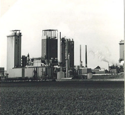 Nederlandse Stikstof Maatschappij (NSM) te Sluiskil.