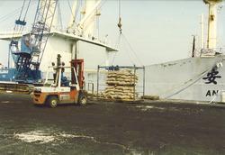 Overslag van aardnoten bij Flushing Stevedoring in de Bijleveldhaven.
