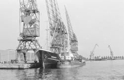 Kranen en schepen aan de kade van de Zevenaarhaven. Op de achtergrond...