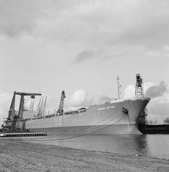 Overslag uit zeeschip met drijvende kranen door Ovet in de...