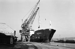 Lossen van het schip Rocknes in de Noorderkanaalhaven bij Aug. de...