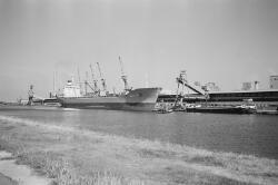 Zeeschip en binnenvaartschepen aan de kade bij de Nederlandse Stikstof...