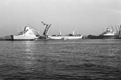 Overslag van kolen met een drijvende kraan vanuit een zeeschip in een...