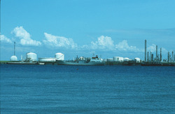 Schepen in de Braakmanhaven bij Dow Chemical.