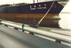 China Fortune in Kaloothaven.