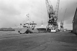Het lossen van het schip Elisia aan de kade van de Zevenaarhaven.