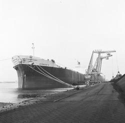 Overslag met drijvende kranen uit zeeschip aan de terminal van Ovet in...