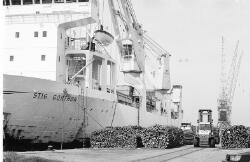 Het lossen van hout uit het zeeschip Stig Gorthon aan de kade van de...