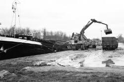 Het lossen van bieten voor de suikerfabrieken aan Zijkanaal H te Sas...