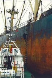 Beloodsing van een zeeschip op de Westerschelde door het Belgisch...