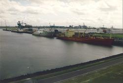 Koelschip (reefer) in de Bijleveldhaven.