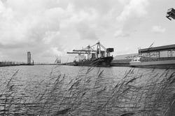 Zeeschepen aan de kade van de Zevenaarhaven bij de bulkterminal van...