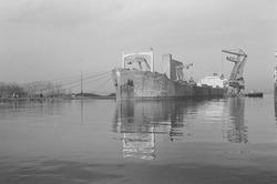 Het lossen van een zeeschip met drijvende kranen door Ovet in de...