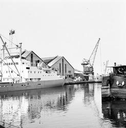 Overslagwerkzaamheden in de Zuiderkanaalhaven.