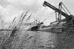 Schepen aan de kade bij de bulkterminal van Aug. de Meyer BV in de...