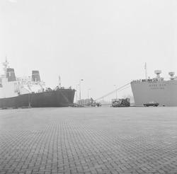 Ro-ro schepen aan de kade van de Zevenaarhaven.
