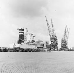 Overslagwerkzaamheden in de Zevenaarhaven, maart 1978.