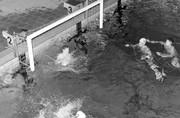 """Zwembad """"De Spetter"""" waterpolo wedstrijd bij avond"""