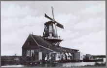 """Westzaan  Molen """"De Cacaoboom"""", verbrand 16-02-1900"""