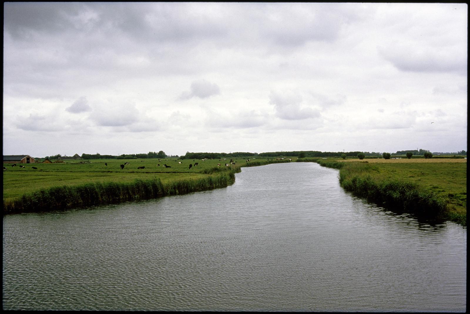Natuurreservaat Knie in de Eilandspolder