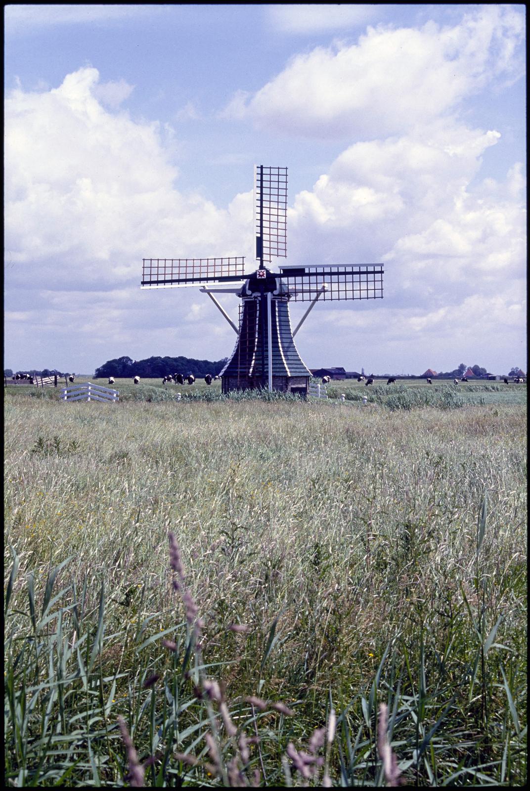 """Monniksmolen of """"mounts"""" in het Friese landschap bij Workum."""
